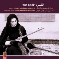 Fariba Hedayati Nikfekr - The Drop