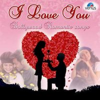 I Love You - Bollywood Romantic Songs