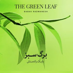 Babak Radmanesh - The Green Leaf (Persian Traditional Music)