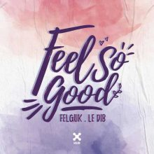Felguk Le Dib Feel So Good
