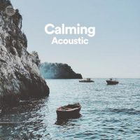 Acoustic Calm (Playlist)