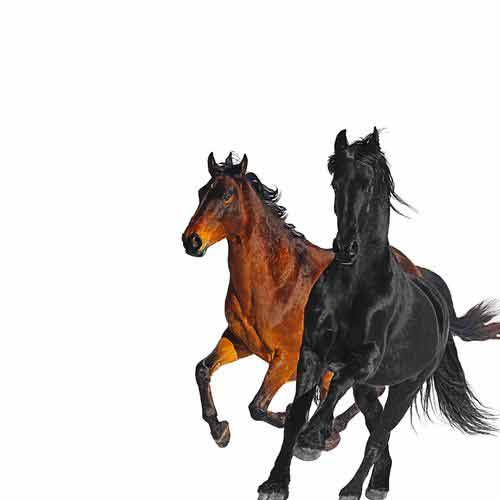 Lil Nas X, Billy Ray Cyrus Old Town Road