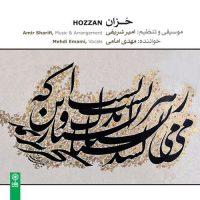 Amir Sharifi Hozzan