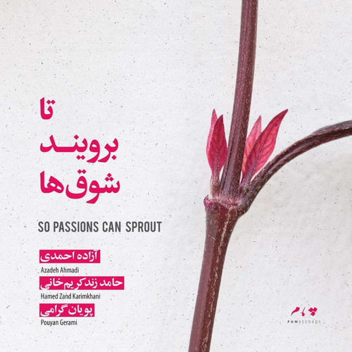 Azadeh Ahmadi So Passions Can Sprout