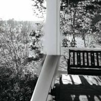 Joy Williams Front Porch