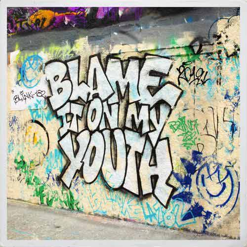 blink-182 Blame It On My Youth