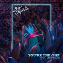 Big Gigantic, Nevve You're The One
