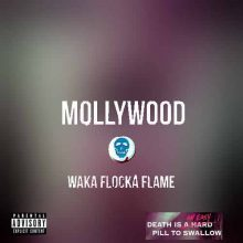 Waka Flocka Flame Mollywood