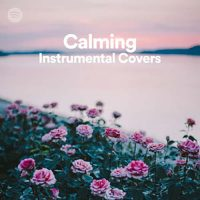 Calming Instrumental Covers