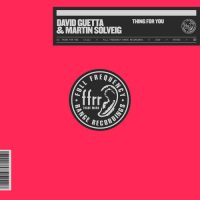 David Guetta, Martin Solveig Thing For You