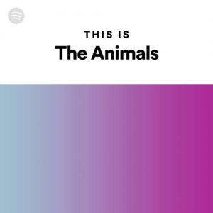 This Is The Animals