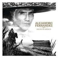 Alejandro Fernández Hecho en México