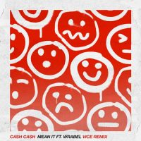 Cash Cash, Wrabel Mean It
