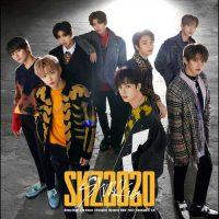 Stray Kids SKZ2020