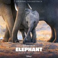 Ramin Djawadi Elephant