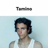 This is Tamino