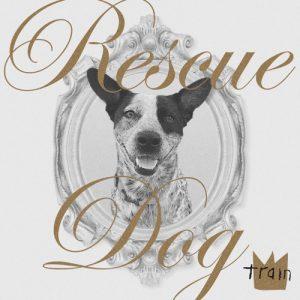 Train Rescue Dog