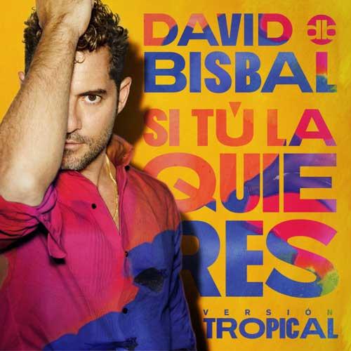 David Bisbal Si Tú La Quieres