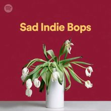 Sad Indie Bops Playlist